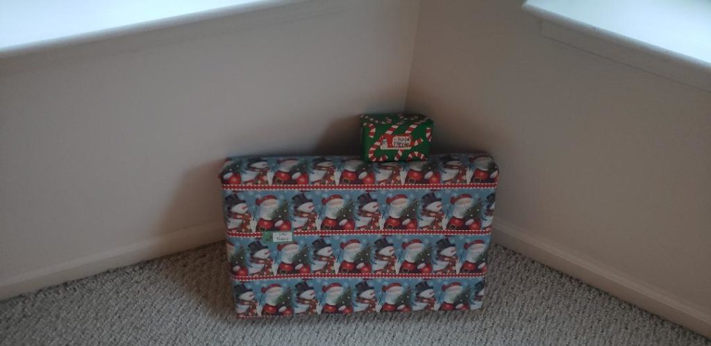 Christmas 2020 2 gifts
